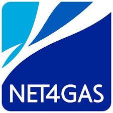 N4G_logo